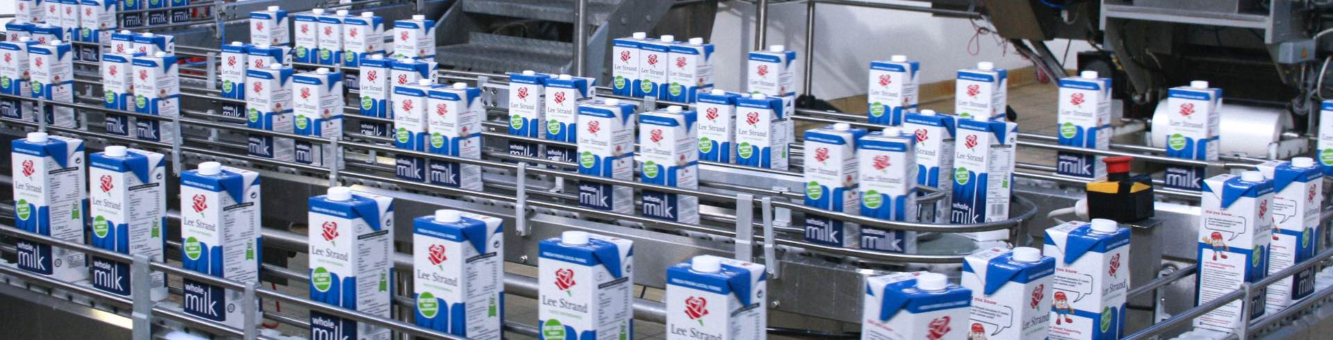 milk cartons on conveyor